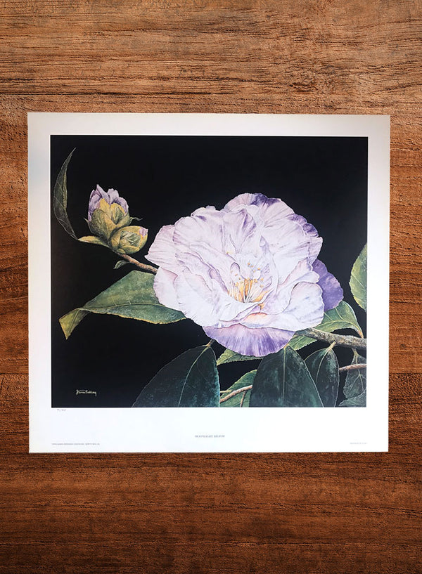 moonlight bloom floral painting