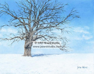 A Winter Day by John Ward www.jwardstudio.com snow landscape tree
