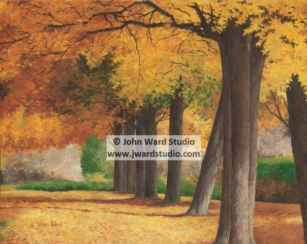An Autumn Day by John Ward www.jwardstudio.com Fall trees leaves