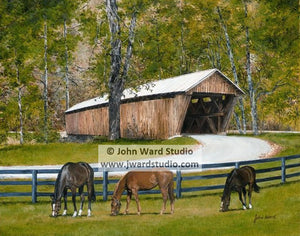 Beauty at Bennett's Mill Covered Bridge by John Ward www.jwardstudio.com horse Greenup County Kentucky