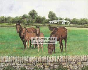 Bourbon County Splendor by John Ward www.jwardstudio.com horse farm Paris Kentucky
