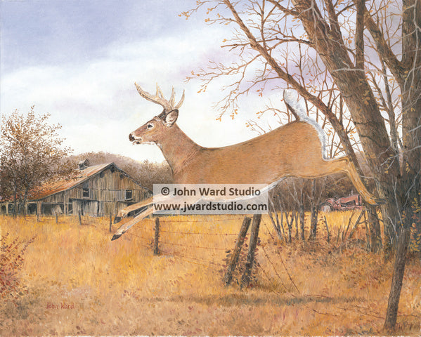 Breaking Cover by John Ward www.jwardstudio.com deer wildlife hunting barn