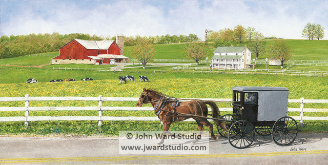 Buggy Ride by John Ward www.jwardstudio.com horse and Amish buggy barn farm