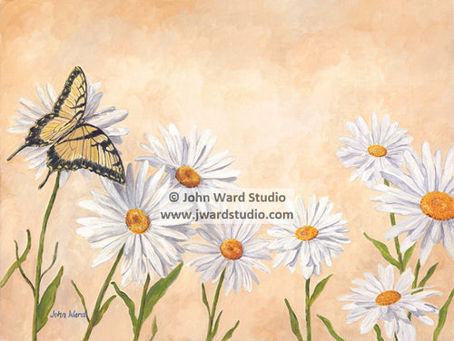Butterfly and Daisies by John Ward www.jwardstudio.com flower