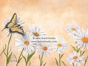 Butterfly and Daisies by John Ward www.jwardstudio.com white daisies flower yellow butterfly