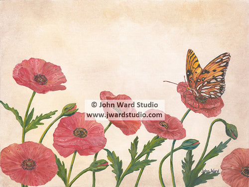 Poppies by John Ward www.jwardstudio.com red poppy flower orange butterfly