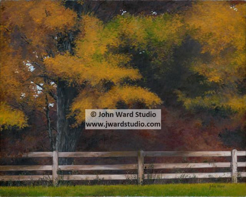 Autumn Afternoon by John Ward www.jwardstudio.com fall leaves trees color fence
