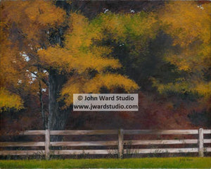 Autumn Afternoon by John Ward www.jwardstudio.com fall leaves trees color fence Kentucky autumn