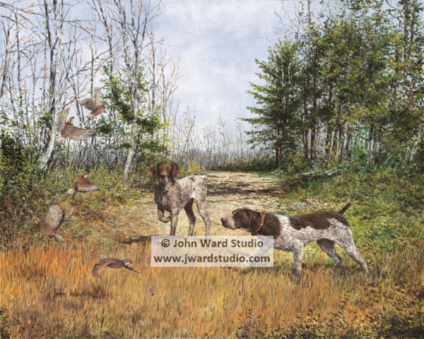 Flush by John Ward www.jwardstudio.com quail hunting dog german shorthair