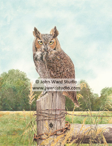 Great Horned Owl by John Ward www.jwardstudio.com bird wildlife fence