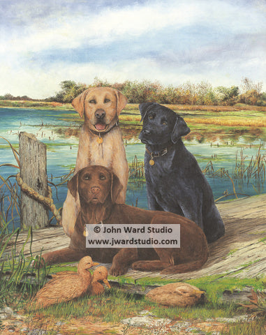 Just Labs by John Ward www.jwardstudio.com dog duck retriever