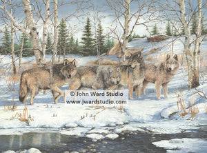 Masters of the Forest by John Ward www.jwardstudio.com wolf woods snow