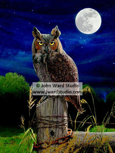 Night Patrol by John Ward www.jwardstudio.com Owl moon fence post