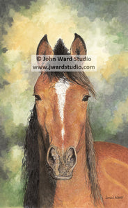 Nutmeg by John Ward www.jwardstudio.com brown horse portrait