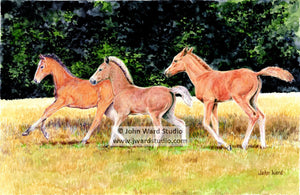Out for a Run by John Ward www.jwardstudio.com horses horses farm