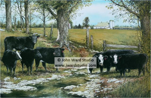 Peaceful Spring by John Ward www.jwardstudio.com cattle farm Kentucky Simmental Association