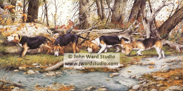 Run on Indian Creek by John Ward www.jwardstudio.com beagle hunting creek dog