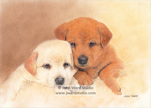 Snuggle Babies by John Ward www.jwardstudio.com dog lab puppies