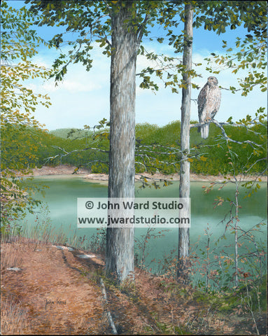 Summer Reflections by John Ward Kentucky 4-H owl lake www.jwardstudio.com