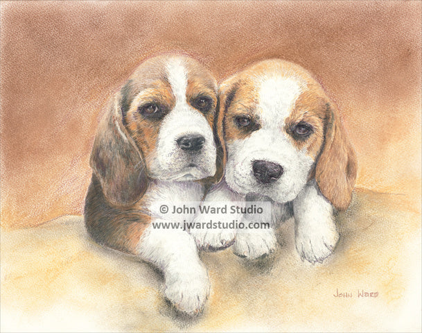 Together by John Ward www.jwardstudio.com beagle dog puppies