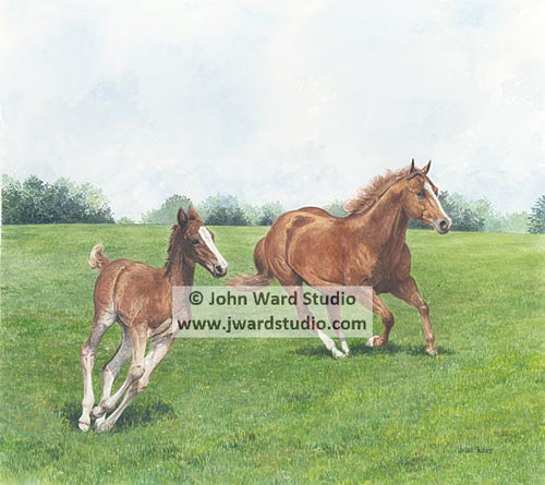 Unbridled Spirit by John Ward www.jwardstudio.com horses running mare and colt Kentucky