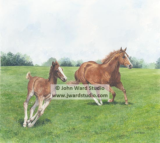 Unbridled Spirit by John Ward www.jwardstudio.com horses running mare and colt foal Kentucky art