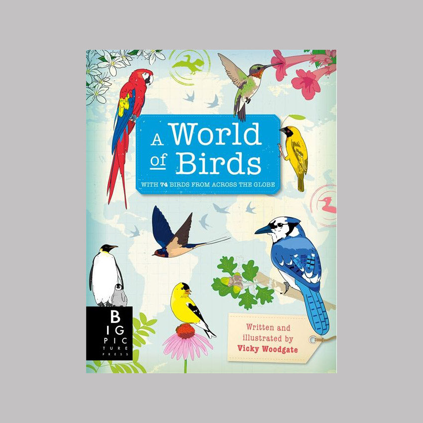 Templar Publishing A World of Birds - Vicky Woodgate
