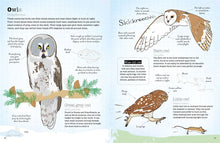 A World of Birds - Vicky Woodgate