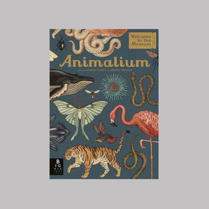 Templar Publishing Animalium - Jenny Broom/Katie Scott