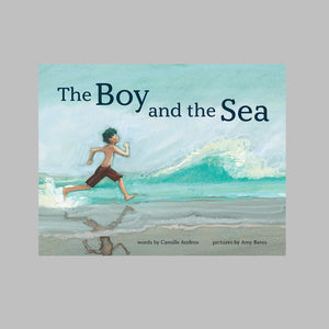 Abrams the Art of Books The Boy and the Sea - Camille Andros, Amy June Bates