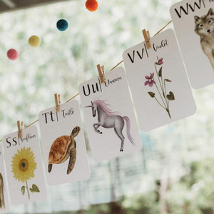 "Jo Collier Designs ""Nature's ABC"" Flashcards"