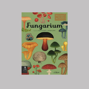 Bonnier Books Templar Publishing Fungarium  - Royal Botanic Gardens Kew/Katie Scott