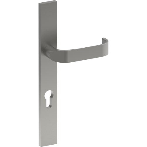 MOSS Door Handle on B02 EXTERNAL Euro Style Backplate with Cylinder Hole, Concealed Fixing (Half Set)