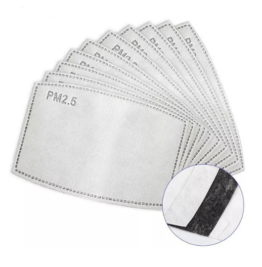 PM 2.5 Filter for Replacement(10 PCS)