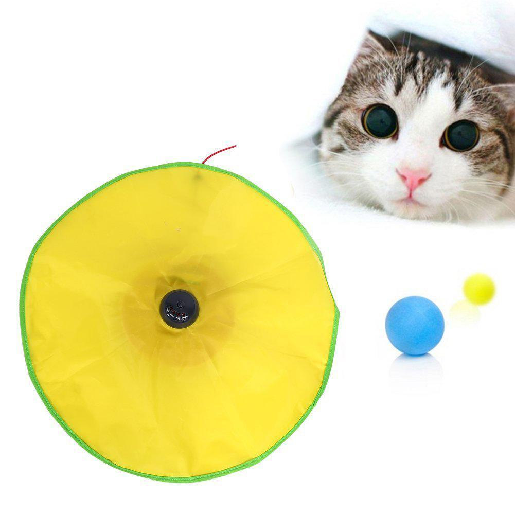 Cat Electric Toy