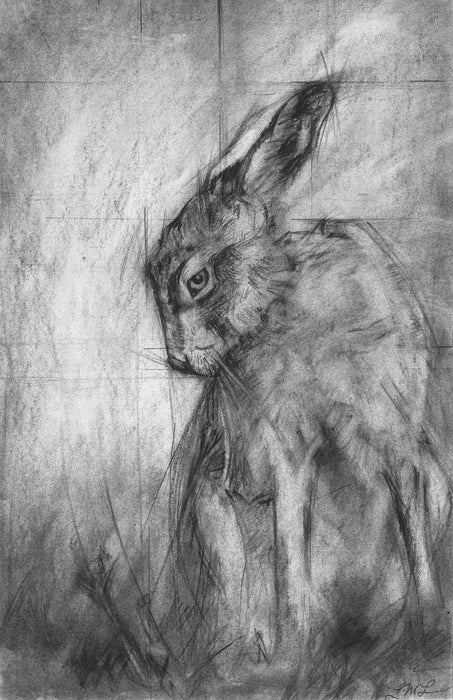 Hare - Open Edition, Signed Fine Art Print