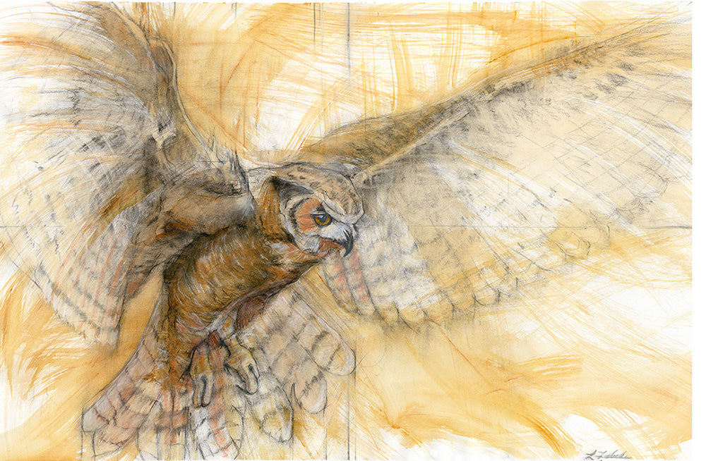 Great Horned Owl - Fine Art Print