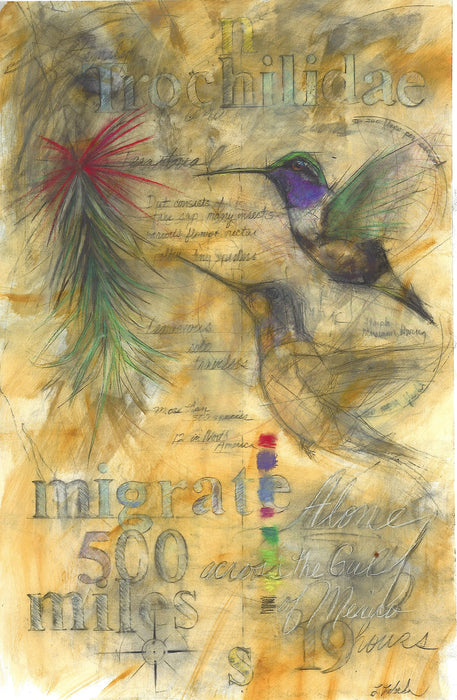 Hummingbirds Migrate - Signed, Limited Edition Fine Art Print