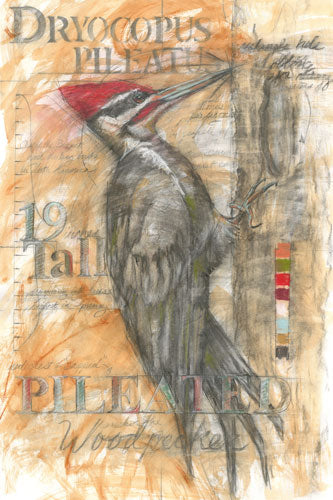 "Pileated Woodpecker - Original 29 1/2"" x 42""Framed"