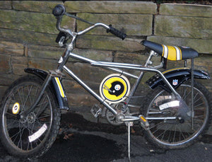 Steelers Bike