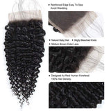Kinky Curly Bundles With Closure Brazilian Human Hair With Lace Closure - omgbeautyhair