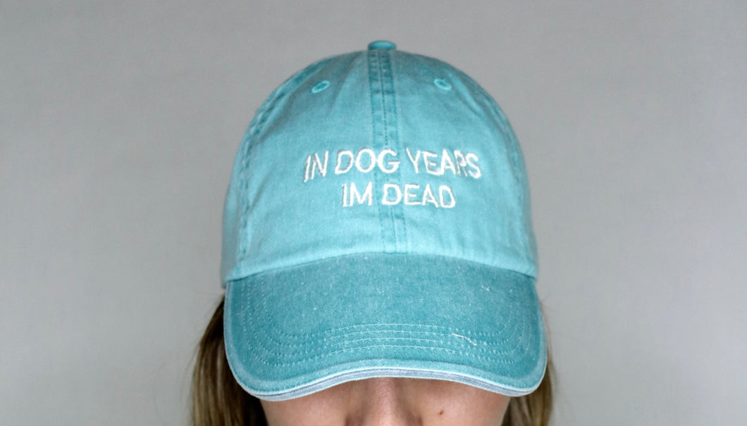 In Dog Years Im Deas Washed-Out Aqua