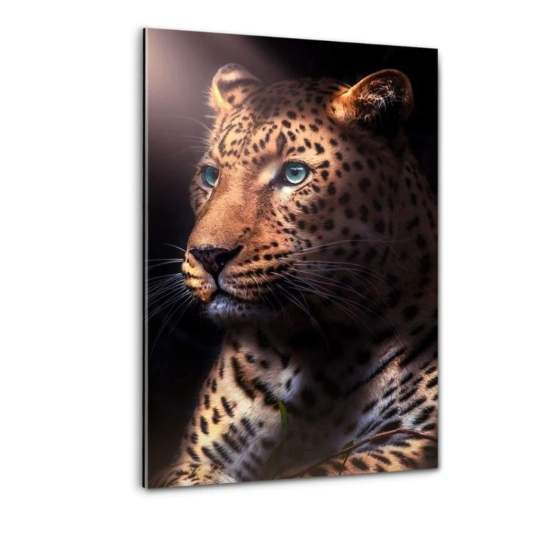 Jaguar In The Dark - Plexiglasbild - Hustling Sharks