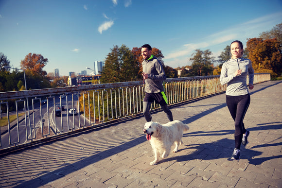 How to Get Fit With Your Dog the Fun Way!