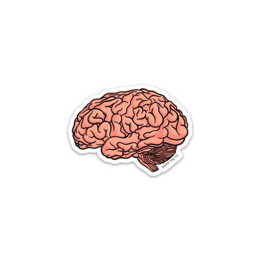 The Anatomical Brain Sticker