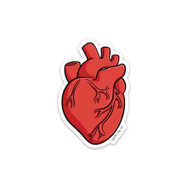 The Anatomical Heart Sticker