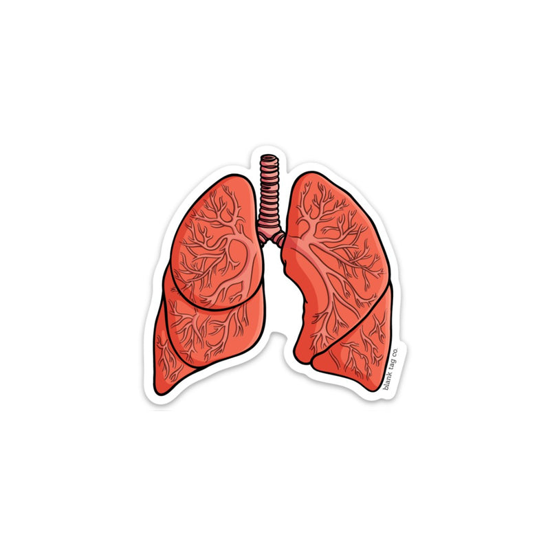 The Anatomical Lungs Sticker