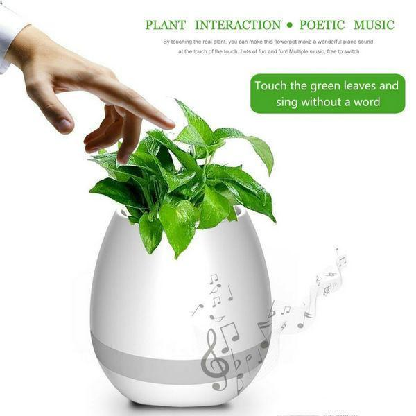 Smart Musician With  LED Light Flower Pot