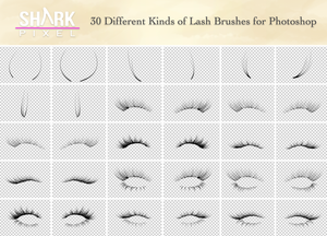 Eyelash Brush Mega Pack - 32 Photoshop Custom Brushes Set