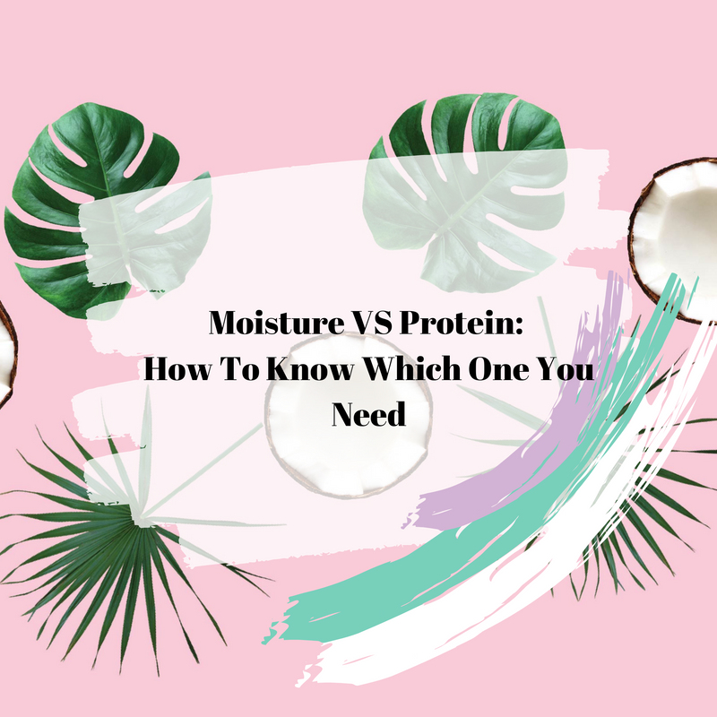 Moisture VS Protein: How To Know Which One You Need